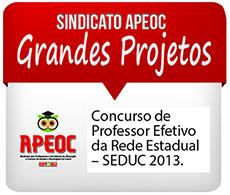 INTENSIVÃO – Concurso para Professor Efetivo da Rede Estadual – SEDUC 2013