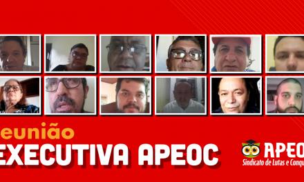 DIREÇÃO EXECUTIVA DA APEOC DEFINE CALENDÁRIO DE MOBILIZAÇÃO VIRTUAL
