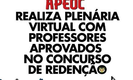 APEOC REALIZA PLENÁRIA VIRTUAL COM PROFESSORES APROVADOS NO CONCURSO DE REDENÇÃO