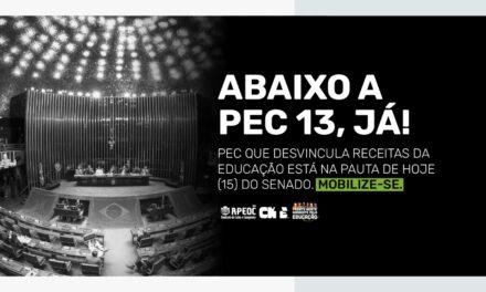 ABAIXO A PEC 13, JÁ: MOBILIZAÇÃO CONTRA A DESVINCULAÇÃO DAS RECEITAS DA EDUCAÇÃO!